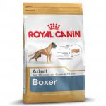 RC Boxer ADULT 12KG