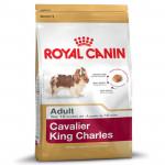 RC Cavalier King C. ADULT 1,5KG