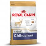 RC Chihuahua JUNIOR 1,5KG