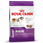 RC GIANT Adult 15KG